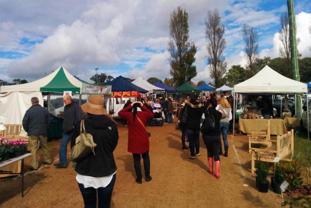 Market With Market Stalls
